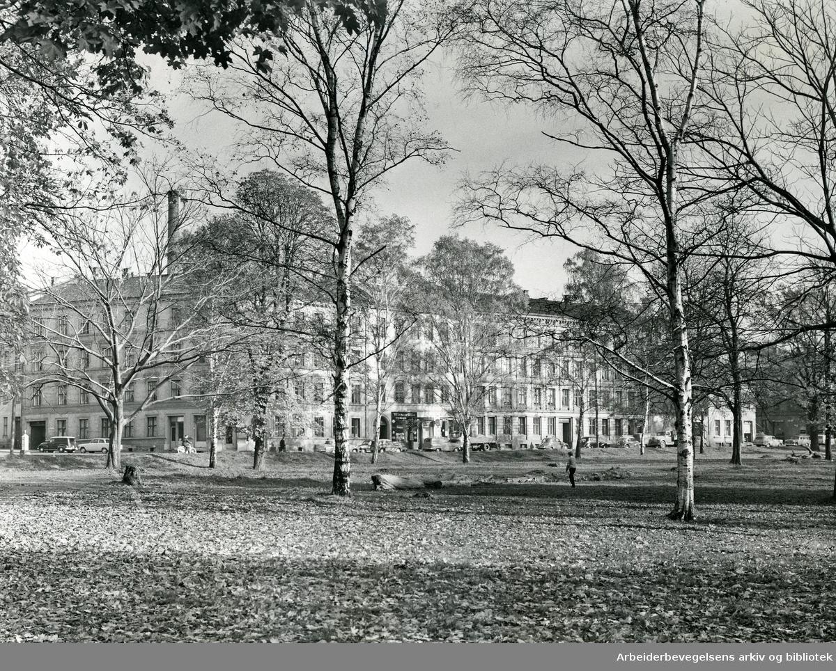Sofienbergparken med Helgesens gate på Grünerløkka,.1963