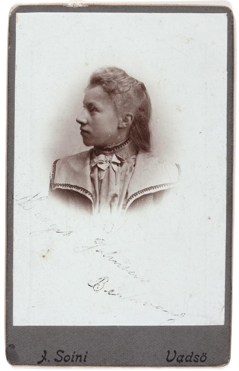 Visittkortfotografi. Fotografert 1870-1905.