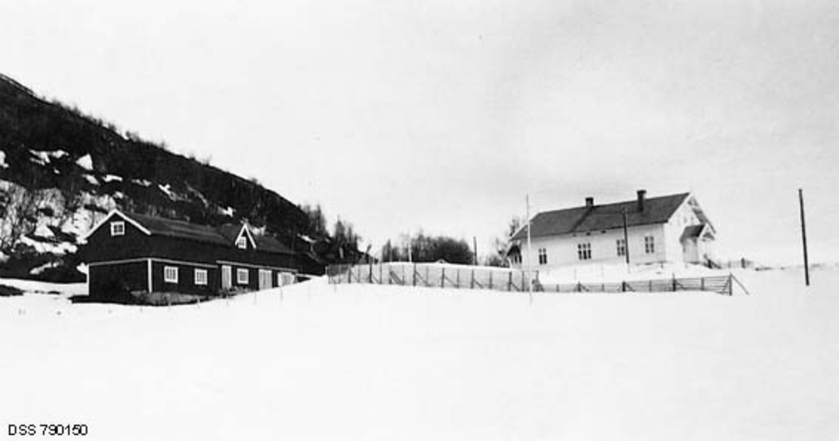 Gardstunet på skogforvaltergarden på Elvenes i Sør-Varanger, der skogforvalter Trygve Tybring Meidell (1889-1963) hadde sin embetsbolig da dette fotografiet ble tatt i 1932.  Meidell var skogforvalter i Aust-Finnmark fra 1924 til 1947.  Fotografiet er tatt i mai måned.  Likevel lå det snø på jordvegen rundt gardstunet, som var plassert på en rygg i landskapet.  Skogforvalteren bodde og hadde kontor i en kvitmalt, halvannenetasjes sveitserstilbygning.  Videre hadde eiendommen en rødmalt driftsbygning, antakelig med fjøs, stall og fôrrom.  Nedenfor våningshuset, mot jordet, var det reist tregrinder, antakelig for å bremse snødrevet vinterstid.  Til venstre for gardstunet ser vi en forholdsvis bratt fjellrygg med bladlaus bjørkeskog.