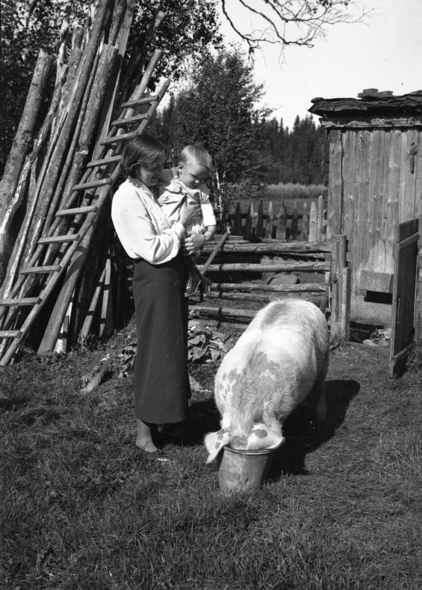 Kvinne med barn og gris