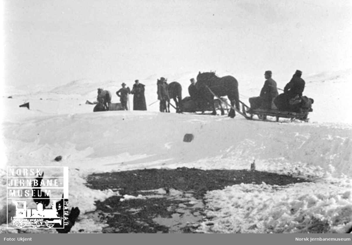 Et selskap på reise med tre hester med sleder