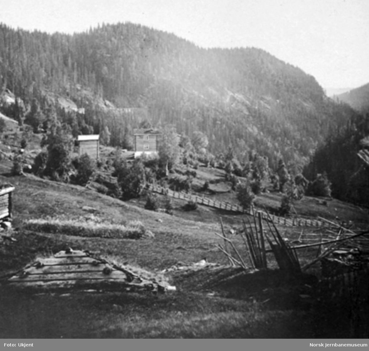 Et gårdsbruk antakelig i Svølja i nærheten av Steinsli