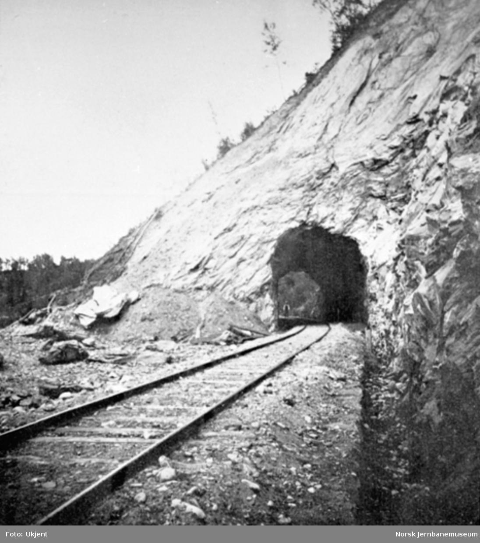 Tunnelen i Vongraven ved Rugldalen