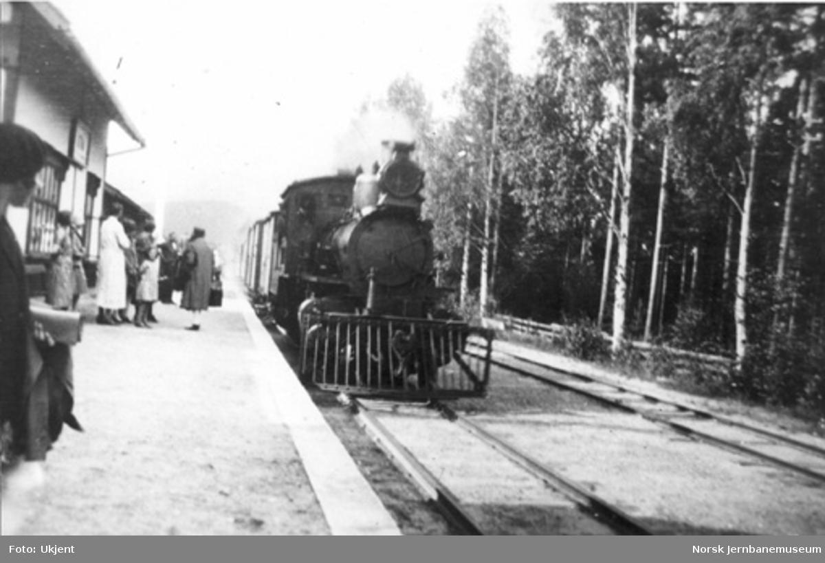 Atna stasjon med reisende og ankommende tog