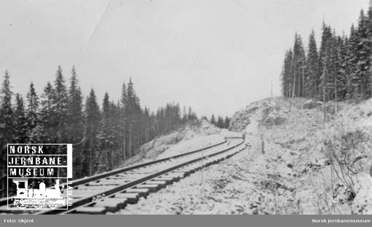 Sunnan-Grongbanen : skinnetipp ved pel 4690, i Leirådalen nord for Snåsa stasjon