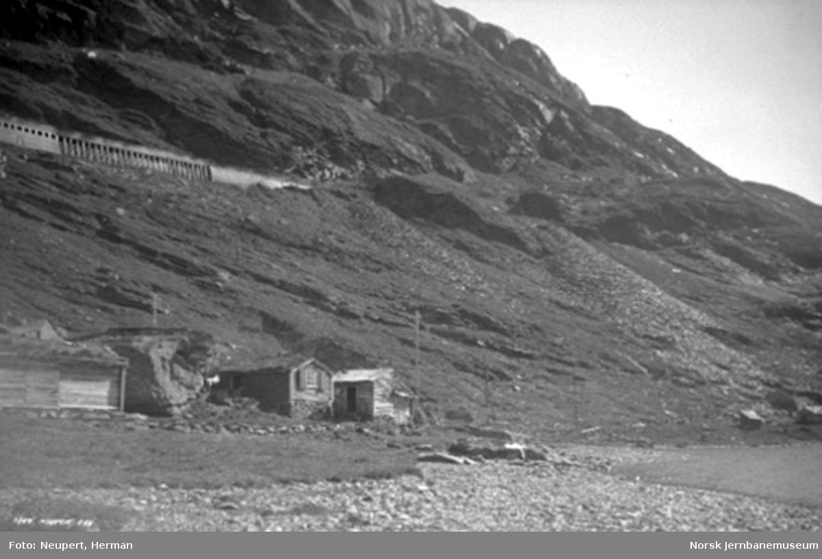 Bergensbanen i fjellsiden mellom Hallingskeid og Myrdal; buer i forgrunnen