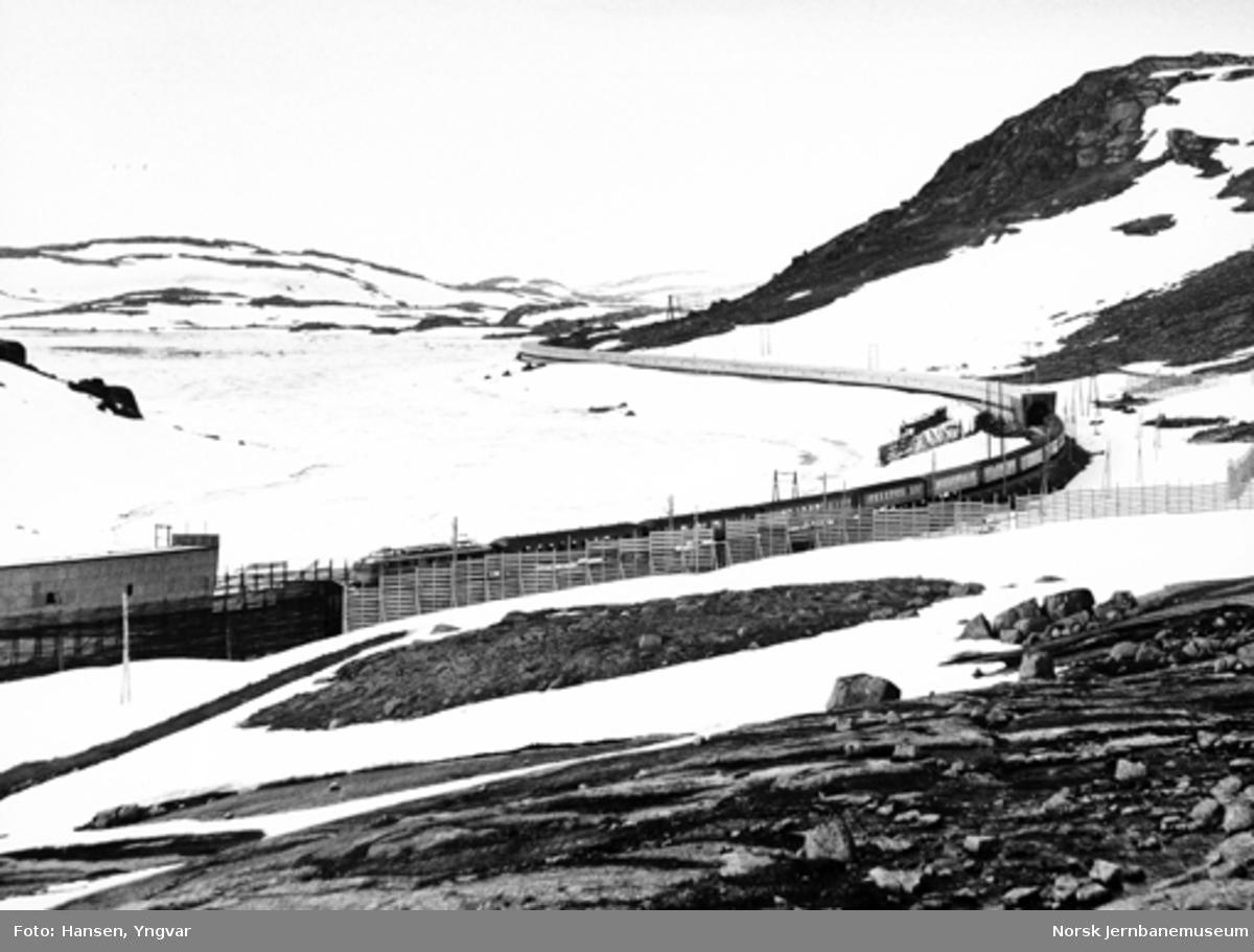 Bergensbanens østgående dagtog ved Fagerbotn