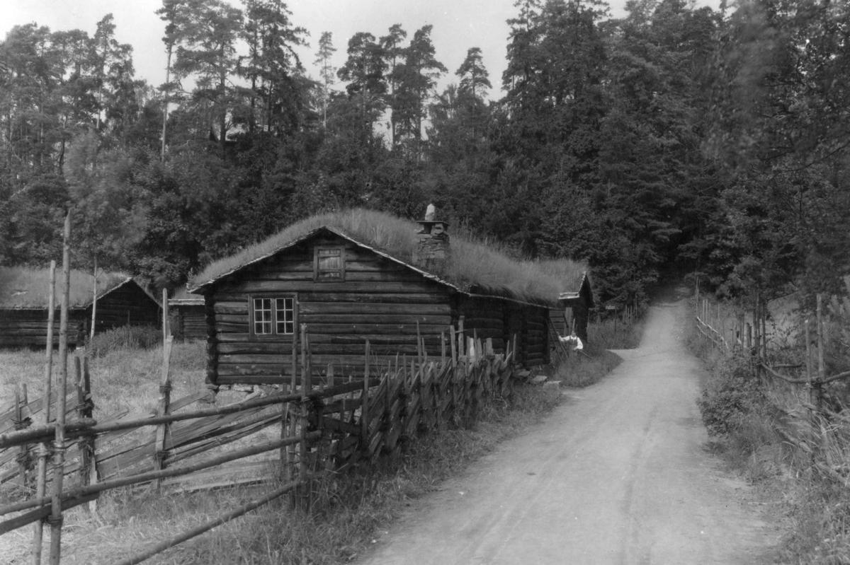 Sel fra Landsverkseter, Nord-Fron (Gudbrandsdalssetra). I bakgrunnen, fra venstre: Geitefjøs fra Kleppdalssetra eller Tjønnsetra i Nord-Fron og fjøs fra Loftsgård i Sel. Fotografert på Norsk folkemuseum, juli 1925.