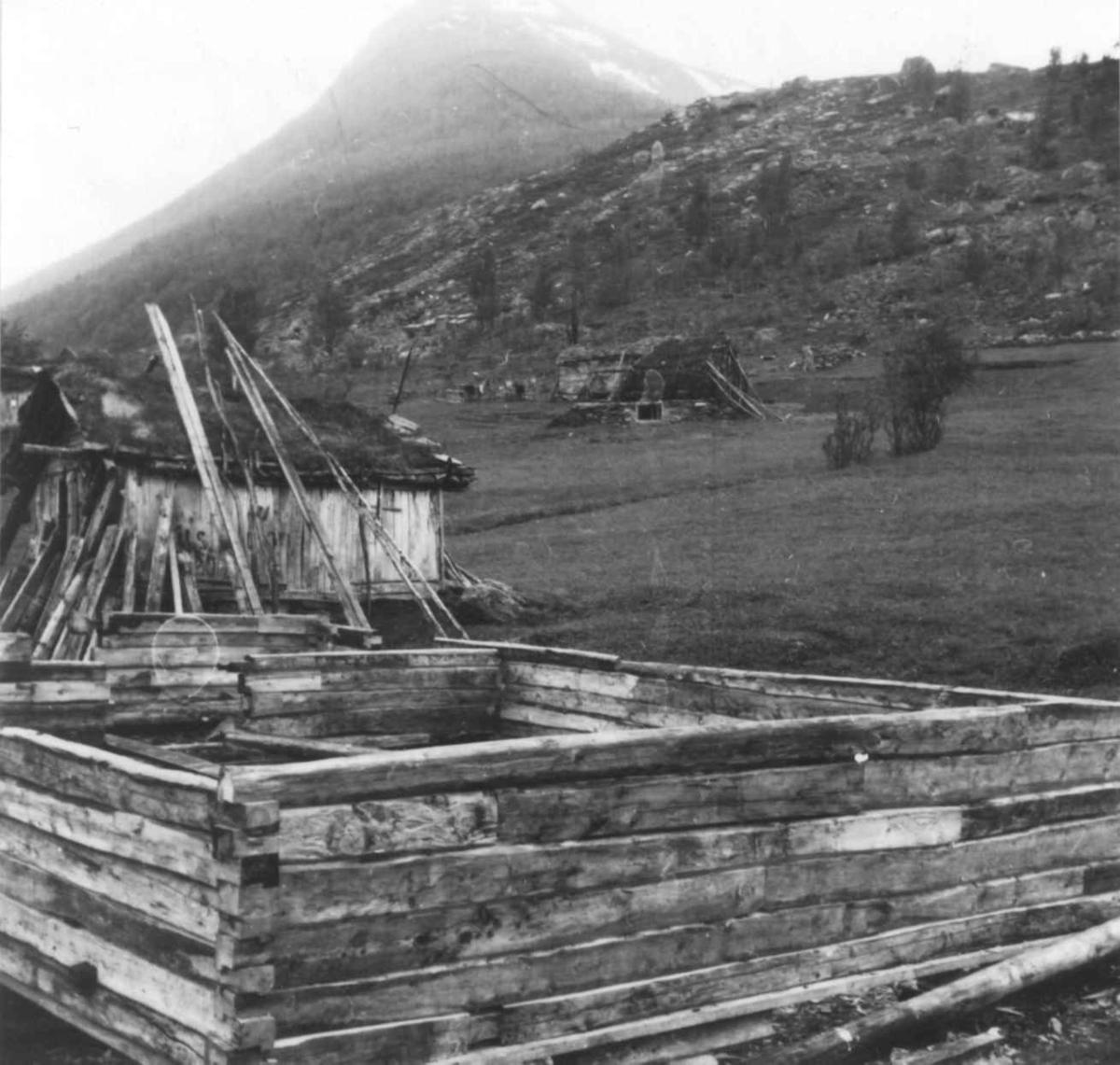 Ole og Lorentse Nilsen, tømret fjøs under oppførelse. Stordalen 1948.