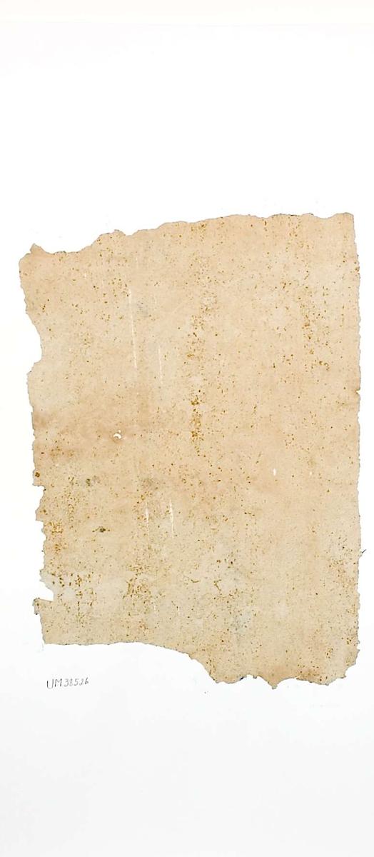 Tapetprov med tryckt mönster i beige. Kartongen är numrerad på baksidan: 166 18.