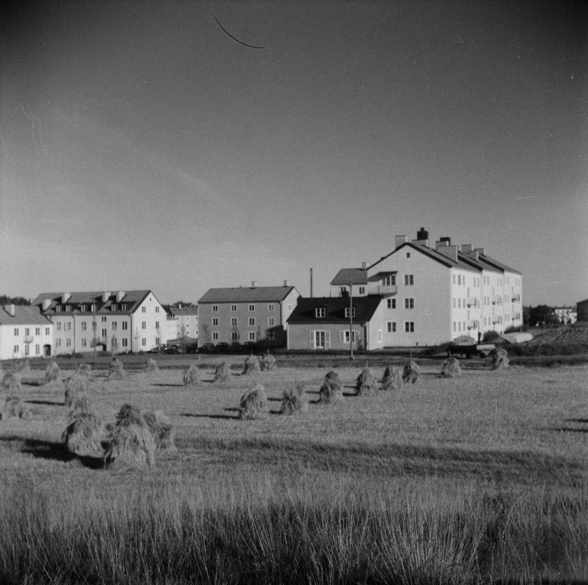 Studentstaden, Rackarberget, Uppsala