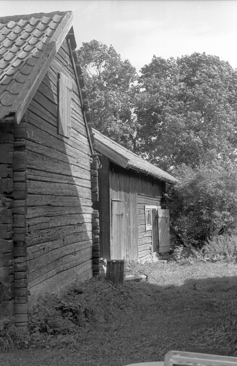 Fähus, Tiby 8:7, Börje socken, Uppland 1983