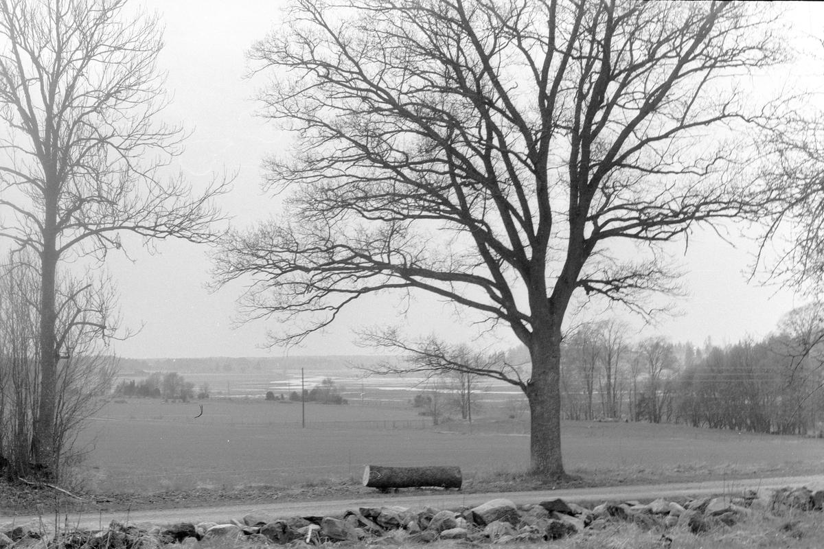 Utsikten från Edshammar 10:1, 2:6, 2:7 och 2:8, Granängen, Lena socken, Uppland 1977