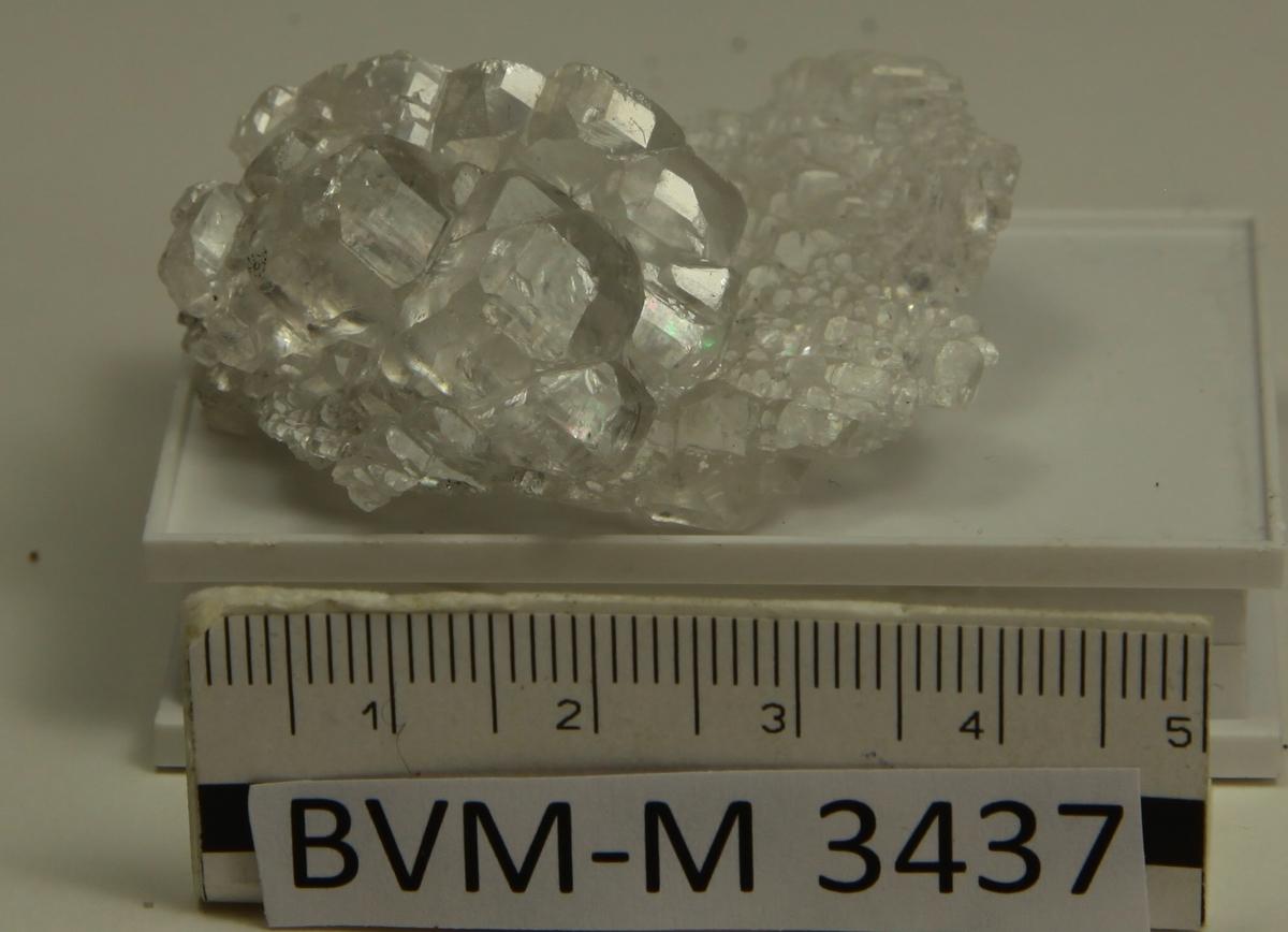 Kalsitt, 1/2 kryst. av sinkblende (evt. pyrargyritt), sammenvoksning av vannklare, blanke xls.