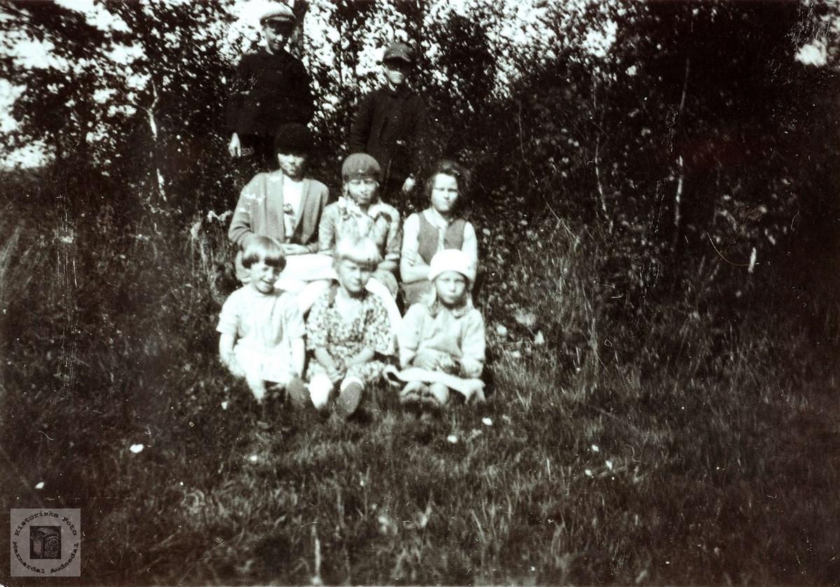 Småbarn samlet på Vårdal i Grindheim.