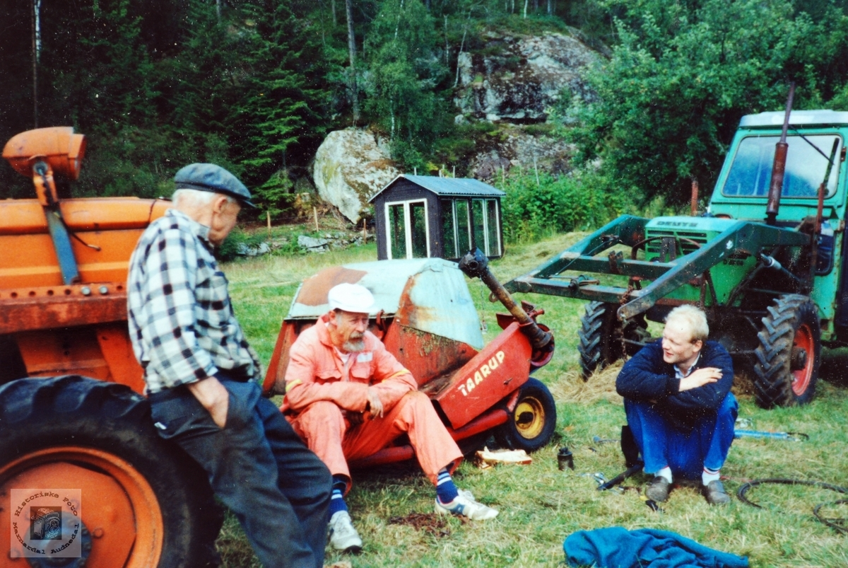 Der karane liker seg best, mellom traktorer og maskiner. Smedsland i Audnedal