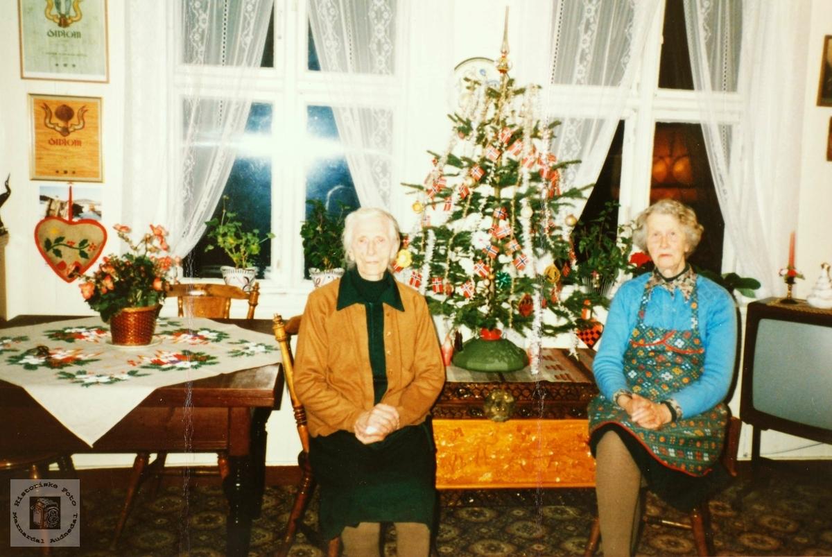Søstrene Olga og Amalia Ågedal feirer jul. Grindheim Audnedal.