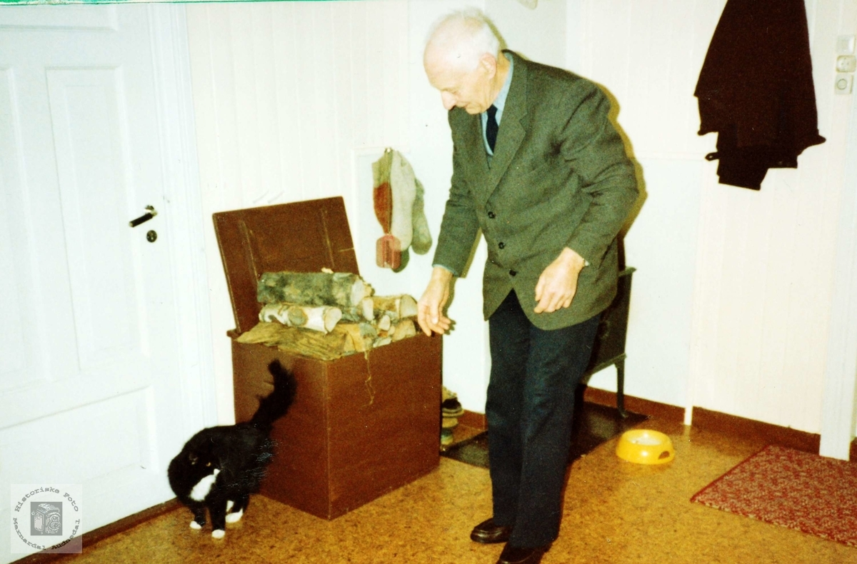 I kulda er både ved og katt godt å ha i hus. Grindheim.