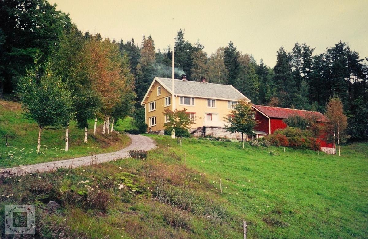 Huset i Golevik. Grindheim.