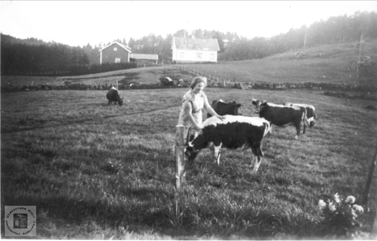 Ragna Bjerland godprater med dyra, Bjelland.