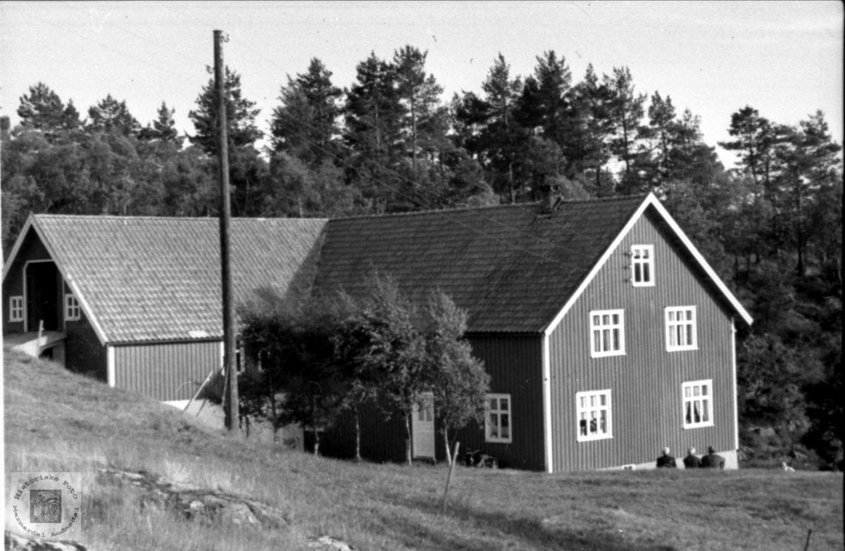 Gardsbruk Homestad i Laudal.