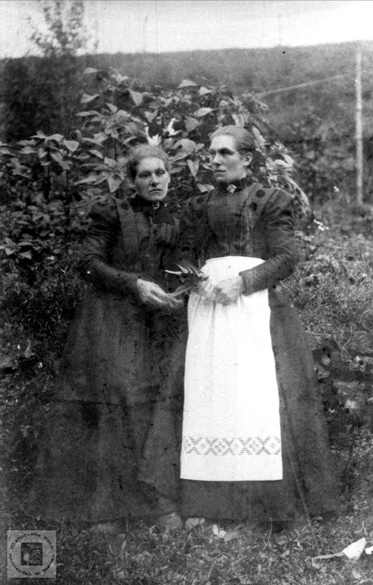 Portrett av Tomine (Mina) og Anna Salvesdtr. Laudal