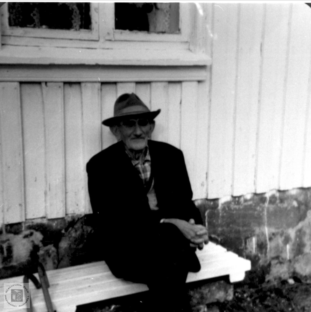 Portrett av Olav Bjørn Høye, Øyslebø.