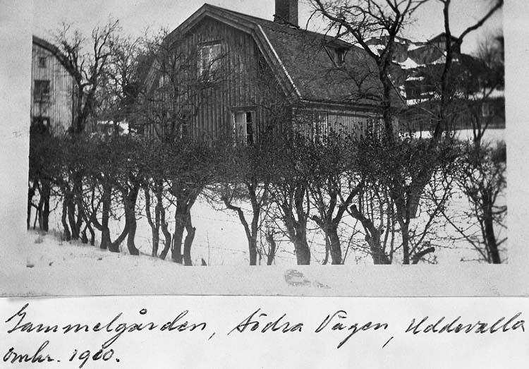 """Text på kortet: """"Gammelgården, Södra Vägen, Uddevalla, omkr. 1900""""."""