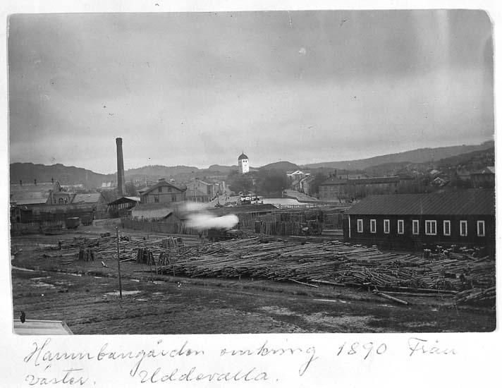 """""""Hamnbangården omkring 1890. Från väster, Uddevalla"""""""