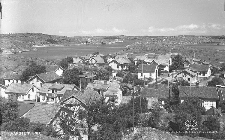 """Enligt AB Flygtrafik Bengtsfors: """"Havstenssund Bohuslän"""".            ::"""