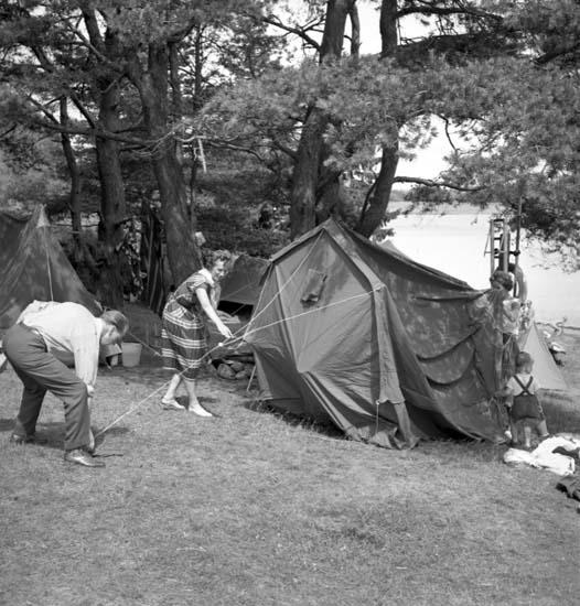 Hafstens camping juli 1958