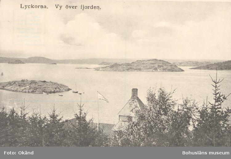 """Tryckt text på kortet: """"Lyckorna. Vy över fjorden"""".  ::"""