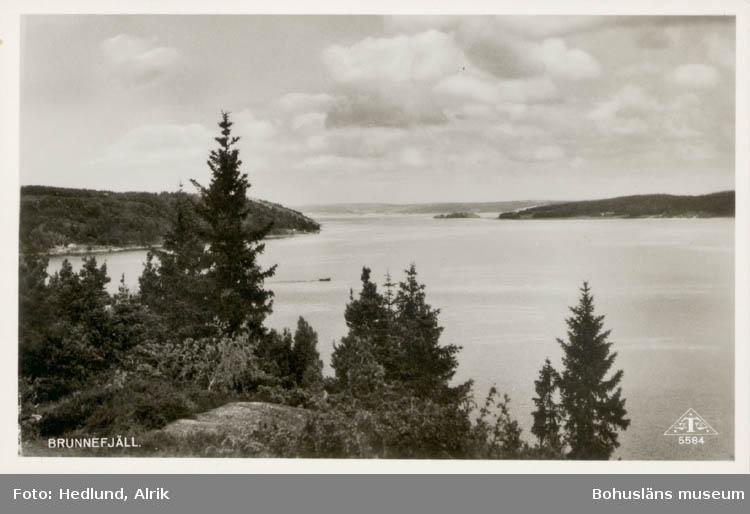 """Tryckt text på kortet: """"Brunnefjäll."""" Noterat på kortet: """"Brunnefjäll Myckleby Orust 1955."""" """"Utsikt nordost över vattnet mellan Orust till v. och Hasselöarna."""""""