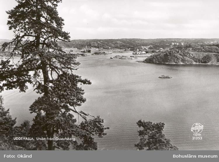 """Tryckt text på kortet: """"Uddevalla. Utsikt från Gustafsberg."""" ::"""