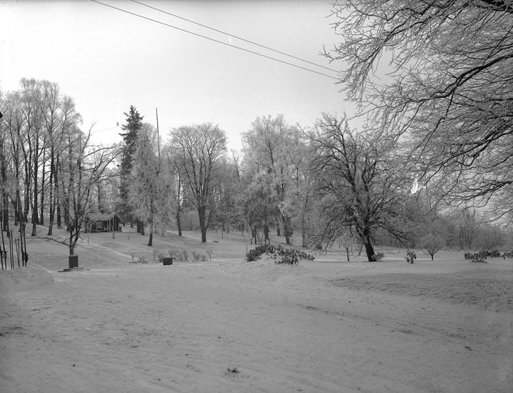 """Enligt medföljande noteringar: """"Nr 11. 1930. B. Parken vid Munkedals Herrgård.""""  Uppgifter från Munkedals HBF: """"Margareta Bildts lekstuga."""""""