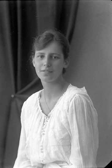 """Enligt fotografens journal nr 3 1916-1917: """"von Sydow, Fr. Ön"""". Enligt fotografens notering: """"Fröken Lottie von Sydow. Ön""""."""