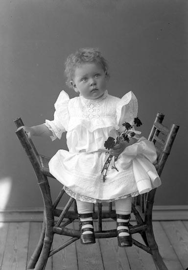 """Enligt fotografens journal nr 2 1909-1915: """"With Herr Wallgrens pensionat"""". Enligt fotografens notering: """"Elsie With, Wallgrens pensionat Här""""."""