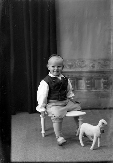 "Enligt fotografens journal Lyckorna 1909-1918: ""Tage Broms Lyckorna""."