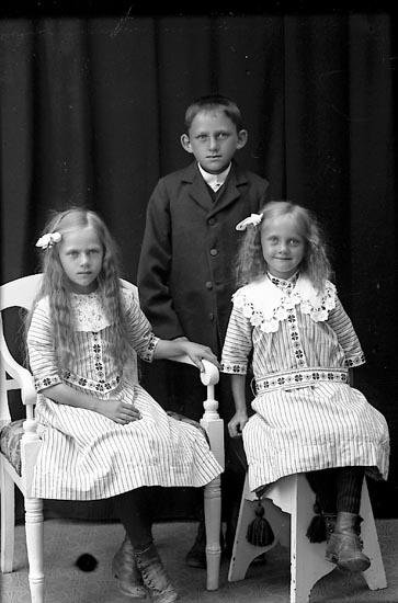"""Enligt fotografens journal Lyckorna 1909-1918: """"Johansson, John, Bräcke, Stillingsön""""."""