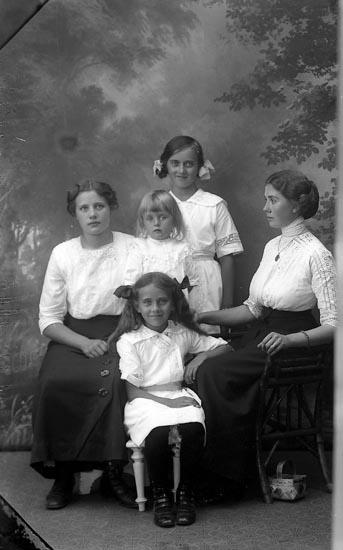 """Enligt fotografens journal Lyckorna 1909-1918: """"Nordström, Familjen Ljungskile""""."""