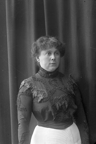 """Enligt fotografens journal nr 2 1909-1915: """"Hedberg, Fru Meli Ön""""."""