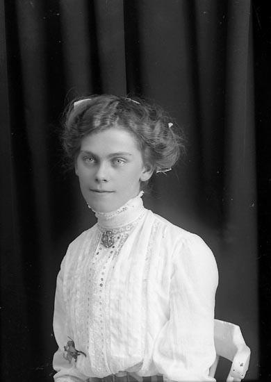 """Enligt fotografens journal Lyckorna 1909-1918: """"Gillberg, Nanny Lyckorna""""."""