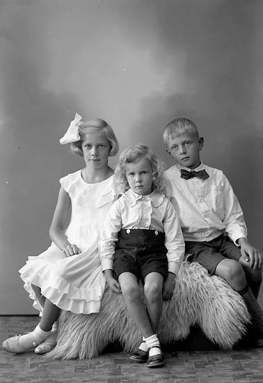 "Enligt fotografens journal nr 6 1930-1943: ""Hellqvist, Handl. Ödsmål""."