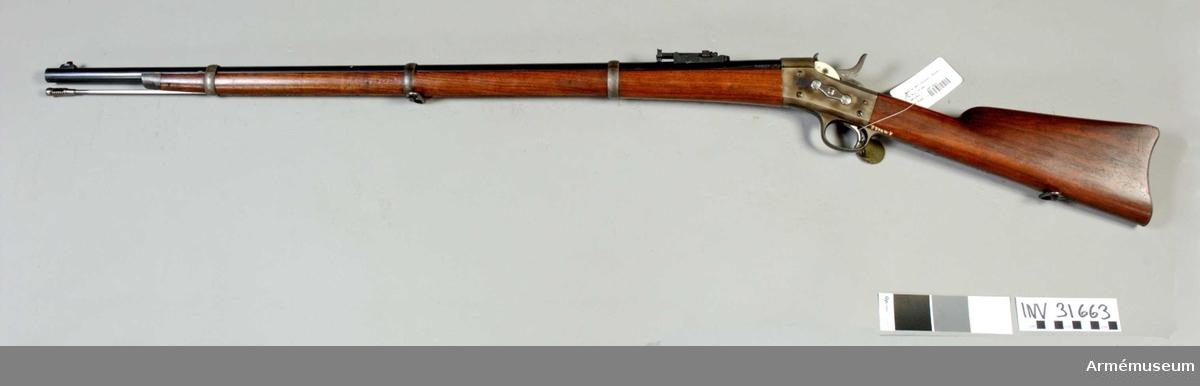 Grupp E II.  Bakladdningsgevär med Remingtons mekanism.