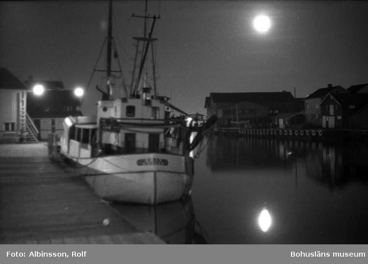 """Enligt fotografens noteringar: """"Nattfoto på Äran.""""  Fototid: 1996-04-03.  1996-04-04.  1996-04-05."""