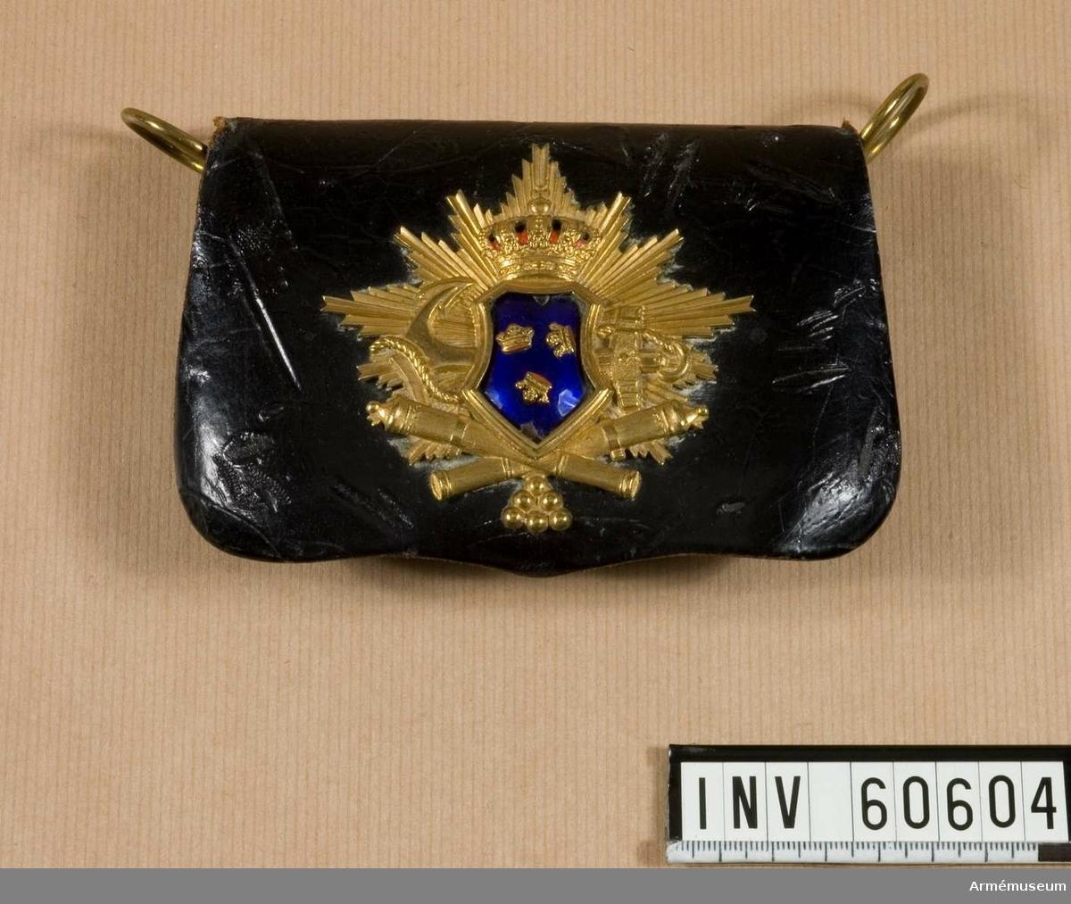 Grupp C I. Ett vågrätt ankare bakom Sveavapnet samt korslagda kanoner, allt på en bakgrund av strålar. Denna plåt har använts av Skärgårdsartilleriet. För såväl Vaxholms- som Karlskronakårerna var riksvapnet av blå emalj med förgyllda kronor för officerare  medan för underofficerare hela plåten var förgylld. Skärgårdsartilleriet var det som senare blev Karlskrona  artillerikår år 1893.