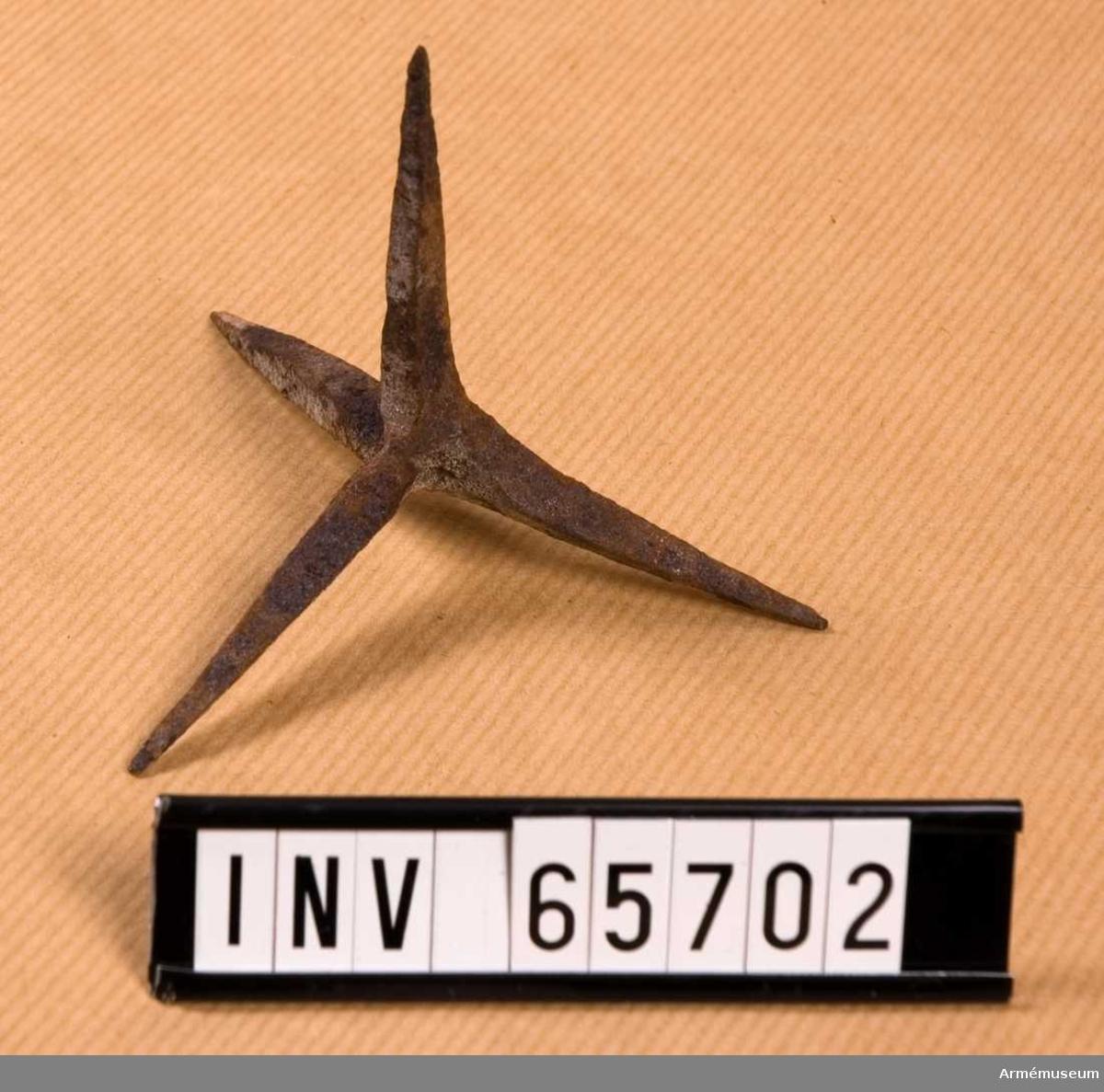 Grupp D IV.  Fotangeln har fyra spetsar, var och en ca 5-6 cm lång.