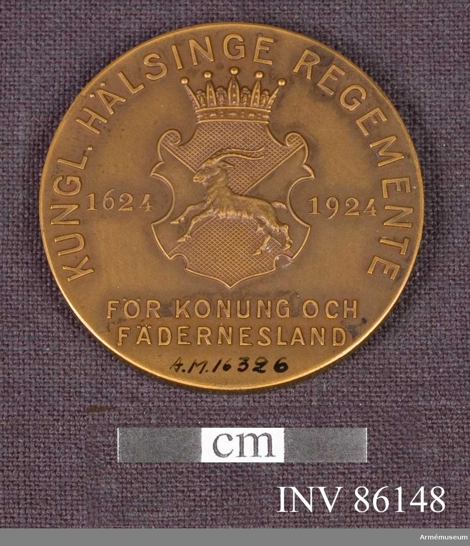 Grupp: M. Åtsidan: I mitten en krönt, utsirad sköld, indelad i 4 fält, 2 rutade och 2 släta, skilda genom 2 korsade, diagonala linier, och upptagande Hälsinglands vapen (en springande stenbock). På sidorna om skölden: 1624 1924. Omskrift, ungefär 273 av medaljens omkrets: KUNGL. HÄLSINGE REGEMENTE. Under skölden: FÖR KONUNG OCH FÄDERNEDSLAND på 2 rader. Frånsidan: WARSCHAU 1656  FREDRIKSODDE 1657  TÅGET ÖVER BÄLT  1658 LUND 1676  LANDSKRONA 1677  NARVA 1700  DÜNA 1701  JACOBSTADT 1704  GEMAUERTHOF 1705  GADEBUSCH 1712. på 8 rader. - I tvärranden: G. O SPORRONG C. .Beskrivning: C.P.  På framsidan är regementets symbol en get avbildad på frånsidan segernamnen för regementet Warschau 1656,Fredriksodde 1657, Tåget över bält 1658,Lund 1676, Landskrona 1677,Narva 1700,Duna 1701,Jacobstad 1704,Gemauerthof 1705Gadebusch 1712.
