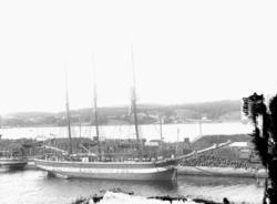"""Enligt senare noteringar: """"Slätskonare i Uddevalla hamn vid"""