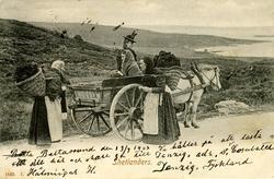 Torvtransport i Baltasound, Shetland